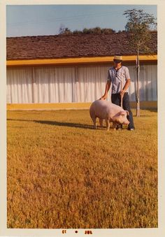 Fred Ziffell even took Arnold the pig on vacation when ever they left Green Acres.