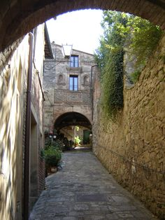 Cobbled street in Cetona, Italia where I'll take my children on bicycle rides.