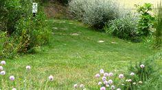 Studio Bellesi Giuntoli - Coastal garden