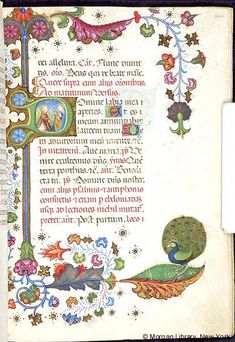 Book of Hours, MS M.454 fol. 226r - Images from Medieval and Renaissance Manuscripts - The Morgan Library & Museum