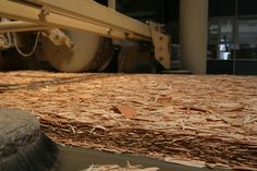 OSB production before gluing with formaldehyde laced glue #HealthyHomes >> Find out more by visiting us at http://wiselygreen.com/green-building-materials/