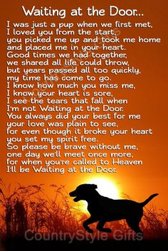 Pet Dog Memorial Waiting at the Door Rainbow bridge keepsake gift - pet sympathy card alternative - Pet Memorials & Pet Memorial Gifts Pet Quotes Dog, Pet Loss Quotes, Animal Quotes, Losing A Dog Quotes, Dog Quotes Love, Love For Animals Quotes, Quotes For Dogs, Best Dog Quotes, Phteven Dog