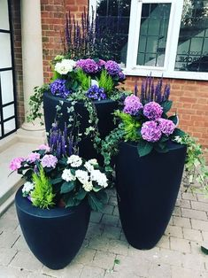 Potted: Luisa showcased her handy work and captioned the shot: All the pretties gardening pots entrance flowers'. Pot Jardin, Flower Garden Design, Container Flowers, Container Plants, Succulent Containers, Container Houses, Container Design, Front Yard Landscaping, Landscaping Ideas