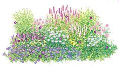 Knöterich in charmanter Begleitung - Blatt & Blüte - Mein Garten - gartenflora.de