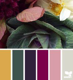Home Color Schemes Green Design Seeds 64 New Ideas Colour Pallette, Colour Schemes, Color Combos, Color Patterns, Design Seeds, Green Design, Pink Design, Palette Design, Color Balance