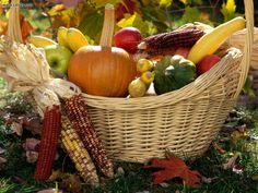 Miscellaneous: Autumn Harvest, picture nr. 18905