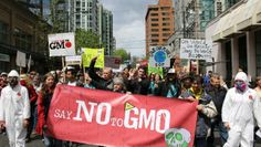 Live coverage of Marches around the world. Thank you, Sustainable Pulse! Collective voices from around the globe are speaking out. BAN GMOs.  Coverage here: http://sustainablepulse.com/2014/05/23/march-monsanto-3-live-sustainable-pulse/#.U4DA8ZRdUXg  #MarchAgainstMonsanto #MarchOn #GMO #Monsanto #Syngenta #Dow #DuPont #Bayer #BASF #BANGMOs #GMOFreeGlobal #GGFC #GMOFreeCanada #GMOFreeUSA