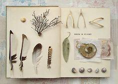 Field Journal. from 4 corners design