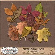 Seasons Change Leave
