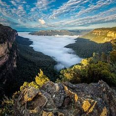 On instagram by mundo_estrella #landscape #contratahotel (o) http://ift.tt/1P1oVJt G R E A T  O F  T H E  W O R L D  A U S T R A L I A S H O T  @garyphayes L O C A T I O N   Princess Rock Wentworth Falls  Australia  S E L E C T E D  B Y   @joseiseab  We show the world through the eyes of landscapes nature and awesome views of our planet. 2016 January 11th.  Use our tag #Mundo_Estrella to feature your amazing shots in our outstanding site  #world #citiesoftheworld #Australia  #Wentworth…