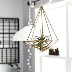 Brass Himmeli Prism no. 2 / Hanging Modern Mobile / Geometric Sculpture / Air Plant Hanging Planter / Minimalist Home Decor