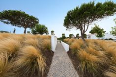 Garden landscaping Algarve | Gardener Services Portugal