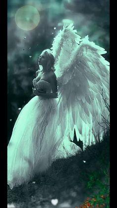 Angel of night, keep us safe in your eternal love 🤍🕊 Fantasy Art Women, Beautiful Fantasy Art, Beautiful Gif, Beautiful Angels Pictures, Angel Images, Angel Pictures, Amazing Gifs, Angels In Heaven, Eternal Love