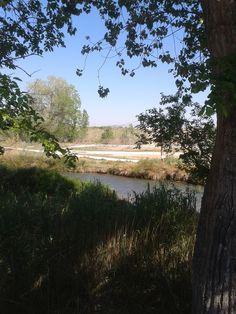 El Turia cerca del Puente Viejo