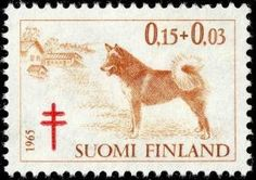Lapland Finland, Going Postal, Hunting Dogs, Christmas Images, Red Cross, Stamp Collecting, Postage Stamps, Art Reference, Nostalgia