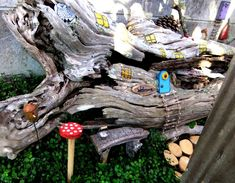 This photo about: Diy Fairy Garden Ideas Design, entitled as Diy Fairy Garden Ideas Inspired - also describes and labeled as: Diy Fairy Garden Ideas,Diy Fairy Garden Ideas Decor,Diy Fairy Garden Ideas Plan, with resolution x My Fairy Garden, Garden Art, Fairy Gardens, Fairies Garden, Glass Garden, Miniature Plants, Miniature Gardens, Mini Gardens, Indoor Plant Wall