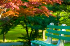 140 Best Park Benches Images Beautiful Landscapes Autumn Scenery