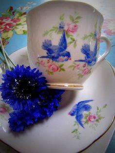 Royal Albert bluebirds Teacup!