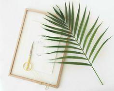 DIY: plantas enmarcadas para decorar la pared : via La Garbatella