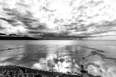 Alaska Seascape by Lauri Novak