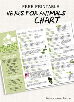 FREE Herbs for Animals Chart! <3 At home remedies for your pets #free