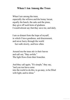 Thirst: Poems - Mary Oliver - When I am Among the Trees Poem Quotes, Words Quotes, Wise Words, Sayings, Epic Quotes, Random Quotes, Pretty Words, Beautiful Words, Cool Words