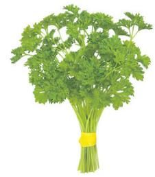 Parsley is rich in iron, iodine, chlorophyll and vitamins A, C and K. The high iron content is very good for anaemia and the associated lethargy.    Chlorophyll is oxygenating and this helps to increase the antioxidant capacity of the blood. Vitamin K is vital for blood clotting