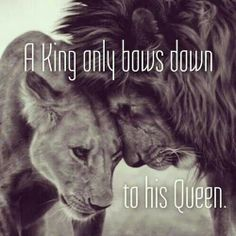 King & Queen of the jungle