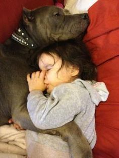 Tendresse entre un chien et un enfant.