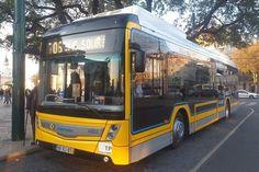 Bus Coach, Coaches, Buses, Lisbon, Trainers, Busses