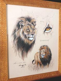 Schwarze Mähne, original Abbildung Löwe
