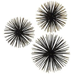 Gold Sea Urchin Wall Decor (19 CAD) ❤ liked on Polyvore featuring home, home decor, wall art, fillers, backgrounds, decor, black, detail, effect and saying