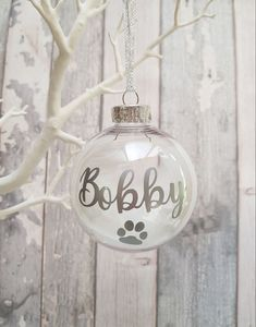 Memorial dog bauble with feathers 🐾Cute way to remember your beloved pet at christmas for only Dog Photo Frames, Little Girl Pictures, Sweet Jars, Dog Treat Jar, Gotcha Day, Personalised Frames, Dog Memorial, Jar Gifts, Christmas Baubles