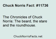 The Chronicles of Chuck Norris: The beard, the... | ChuckNorrisFacts.net
