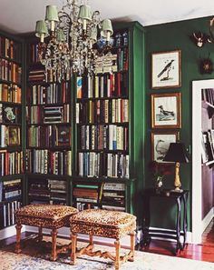 THIS!!! but slightly more blue in the green... and maybe a bit more space b/w the top of bookshelves and crown molding! www.fromtherightbank.com