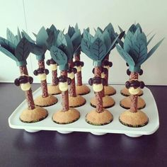 Cupcake jungle