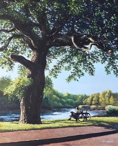 Southampton Riverside park oak tree with cyclist- oil painting of a cyclist resting by a tree while looking at the peaceful River Itchen running through Bittern, on the outskirts of Southampton, Hampshire, during a sunny late summer evening Artwork by artist Martin Davey. Available as a framed print or a rolled up print for you to frame. #summer #painting #hampshire #peaceful #tree #cycling #rest #art