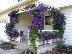 Благоустройство двора частного дома. 20 идей как украсить двор.   Частный Дом