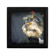 Choose from a variety of Dog gift boxes on Zazzle. Our keepsake boxes are great places to hold valuables like jewelry. Dog Varieties, Custom Gift Boxes, Keepsake Boxes, Dog Gifts, Dogs, Painting, Art, Art Background, Variety Of Dogs