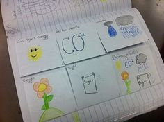photosynthesis foldable I might try this during my photosynthesis week with my 7th graders.