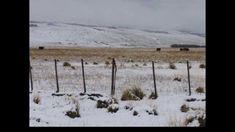 Al Sur del Viento. Ruben Patagonia