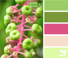 Pink and green is one of my favorite shabby chic color combos!  These particular shades are PERFECT!