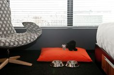 The Alt Hotel Montreal Griffintown is located in a large real-estate complex in one of the most lively districts of Montreal. Montreal Architecture, Architecture Design, Hotel Lobby, Dog Bed, Hospitality, Bean Bag Chair, Window, Lighting, Modern