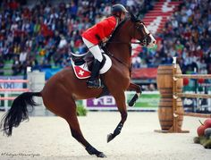Pius Schwizer & TOULAGO, speed competition, World Equestrian Games, Normandy, 2014. Source Jessica Rodrigues for Equidia.