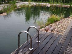 zwem vijver