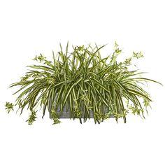 Artificial Garden Plants, Artificial Plant Wall, Artificial Flower Arrangements, Artificial Flowers, Ivy Plants, Fake Plants, Indoor Plants, Balcony Plants, Balcony Garden
