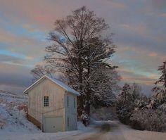 Winter Wonderland after the storm. Photo > Jeff G( the Vermont Wildflower Farm)
