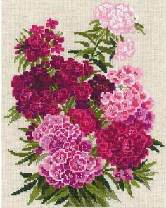 Sweet William Flowers - Cross Stitch Kit