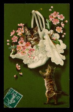 Cats with a flower basket.