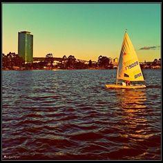 Sail a Laser...